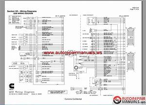 Free Auto Repair Manual   Cummins Wiring Diagram Full Dvd