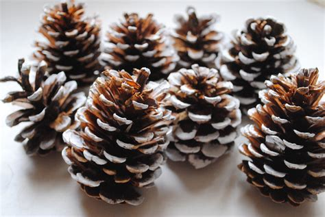 how to decorate with pinecones long hairstyles