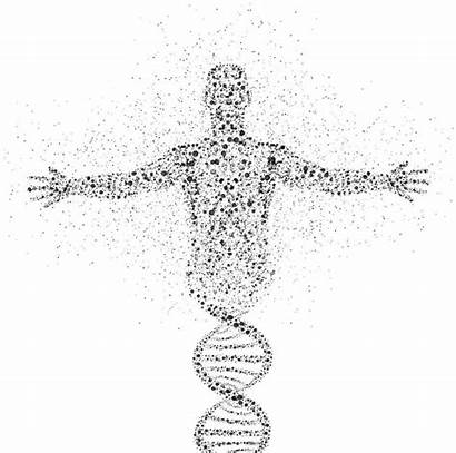 Genetic Makeup Yale Researchers Knowledge Too Much