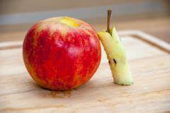Aepfel Richtig Ernten Und Wie Lagern by Boskop Lagern 187 So Bewahren Sie Den Apfel Richtig Auf