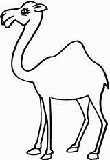 Camel Coloring Clip Cartoon Pages Outline Clipart Camels Printable Hump Cliparts Colouring Animals Barrel Monkeys sketch template