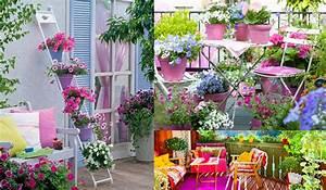 Best Terrazzo Fiorito Tutto L Anno Images - Idee per la casa ...