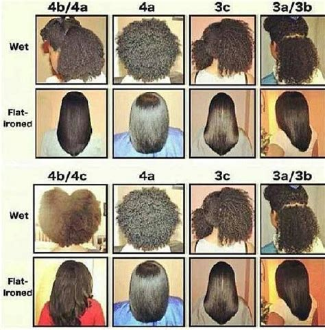 Categories Of Hair by Hair Type Chart For Black Black Hair Types