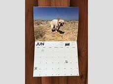 El calendario de perros haciendo popo ya está aquí