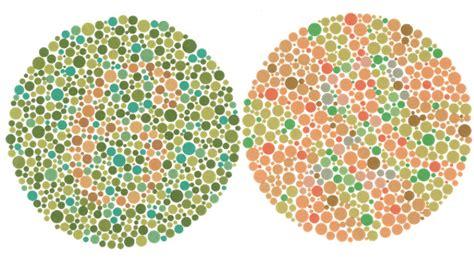 color vision color perception series part 4 x rite