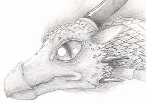 Realistic Dragon by ShikaTheFox on DeviantArt