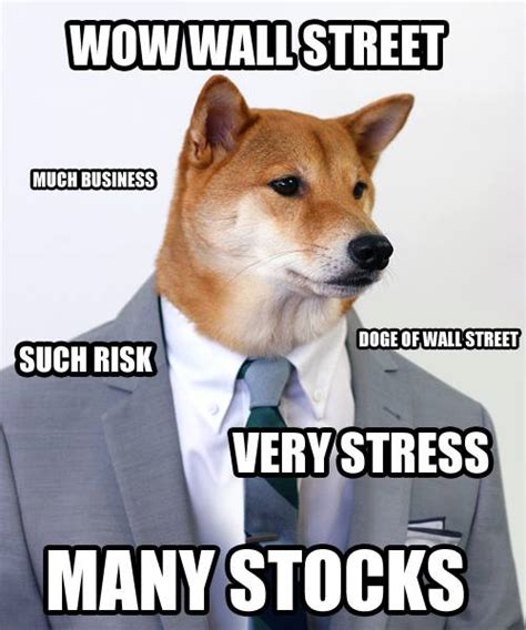 Much Dog Meme - doge meme wow many doge pinterest funny the o jays and doge