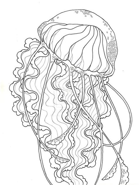 beauty jellyfish coloring pagejpg  print