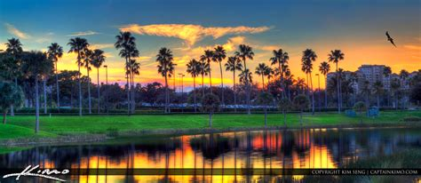 palm gardens sunset at lake by mall