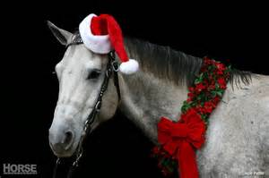 safe holiday decorating at the barn
