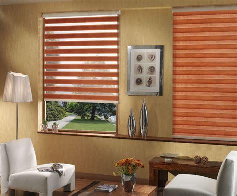 zebra blinds donex