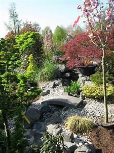 Gartengestaltung Pflegeleichte Gärten : ahornsorten haufler baumschule und gartengestaltung ~ Sanjose-hotels-ca.com Haus und Dekorationen