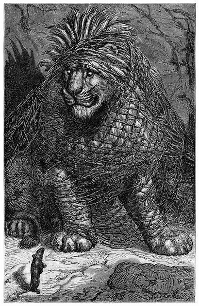 Lion Mouse Aesop Fables Illustrations Congress Library