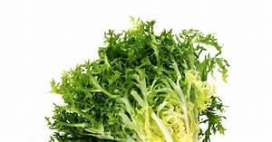 Endiviensalat Pflanzen Setzen : endivie pflanzen pflege und tipps mein sch ner garten ~ Whattoseeinmadrid.com Haus und Dekorationen