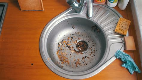kitchen sink clogged with food kitchen sink clogged with food wow