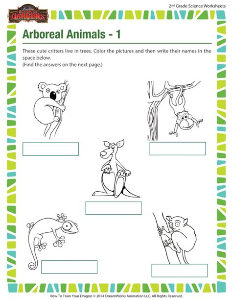 arboreal animals 1 view worksheet 2nd grade kids sod