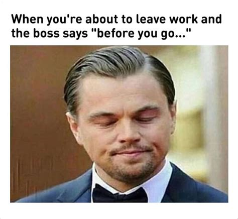 Leonardo Dicaprio Meme 10 Hilarious Reasons Why We Our Work Loldamn