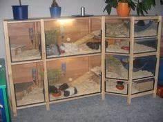 Meerschweinchen Gehege Ikea : meeri gehege mit ma en meerschweinchen pinterest ~ Orissabook.com Haus und Dekorationen