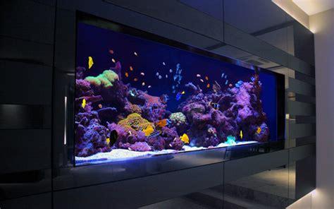 Modern Rugs La by Richmond Residence Custom Made Aquarium