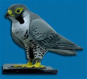 Tauben Vertreiben Geruch : webgesteuerter vogelroboter soll tauben verjagen ~ Eleganceandgraceweddings.com Haus und Dekorationen