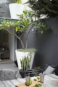 the 25 best deco petit jardin ideas on pinterest With idee deco terrasse exterieure 0 25 idees pour amenager et decorer un petit jardin
