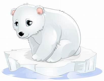 Polar Bear Clipart Transparent Clip Winter Oso