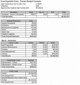 vegetable production budgets for a high tunnel With crop budget template