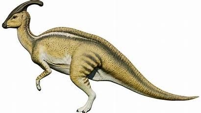 Parasaurolophus Evolution Jurassic Fandom Wiki Rex Zoo