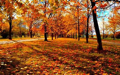 Autumn Wallpapers Definition Backgrounds