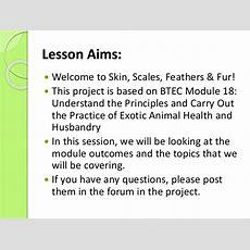 Exotics Lesson 01 Module Introduction
