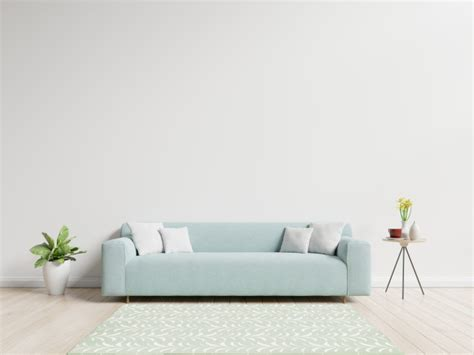 living room  sofa  pillows plant  vase