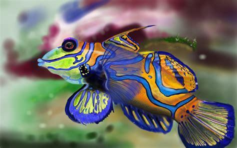 World Of Tanks Wallpaper Mandarin Fish By Rollyb66 On Deviantart
