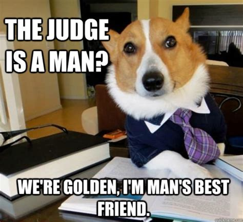 Dog Lawyer Meme - the funniest memes ever this week