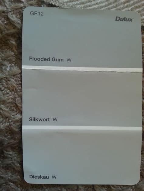 silkwort dieskau dulux paint colours choosing a grey wall