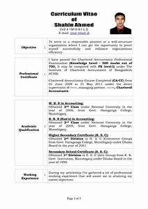 Free Resume Templates Curriculum Vitae Writing Examples