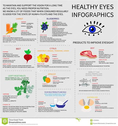 healthy eyes infografics stock vector image