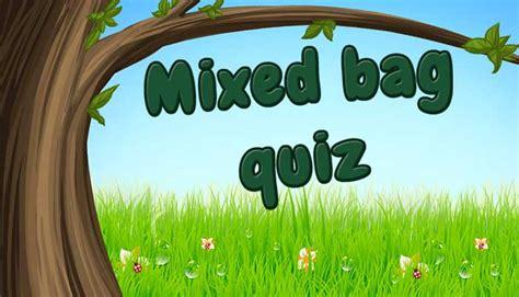 mixed bag quiz fun quizzes  kids mocomi