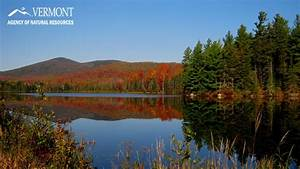 News from Vermont State Parks
