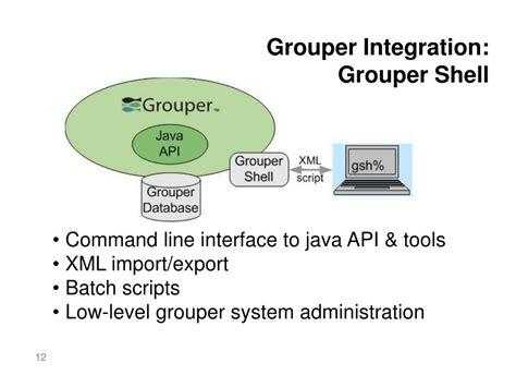 grouper access management service ppt powerpoint presentation integration line