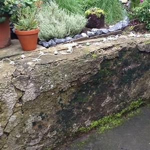 Alte Ziegelmauer Sanieren : wie kann ich unsere alte feuchte gartenmauer aufh bschen ~ A.2002-acura-tl-radio.info Haus und Dekorationen