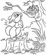 Nest Coloring Bird Pages Rabbit Drawing Saw Nests Mom Tweety Tocolor Button Using sketch template