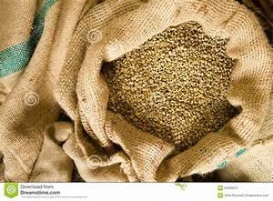Raw Coffee Seeds Bulk Burlap Bag Agriculture Bean Produce ...