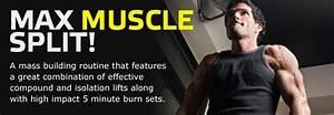 4 Day Maximum Mass Workout