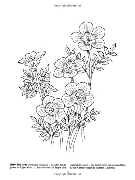 Favorite Wildflowers Coloring Book (Dover Nature Coloring