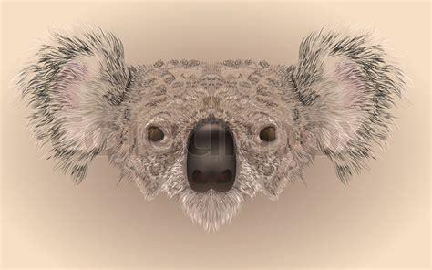 illustartion  koala bear face  realistic maner stock