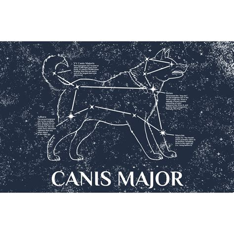 Canis Major - Greek Constellations - Touch of Modern