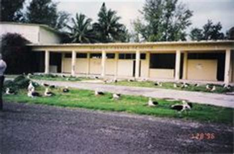 Midway Island George Cannon School