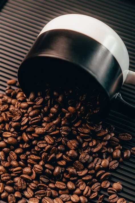Download 258 coffee seed free vectors. Coffee Seeds Pictures   Download Free Images on Unsplash