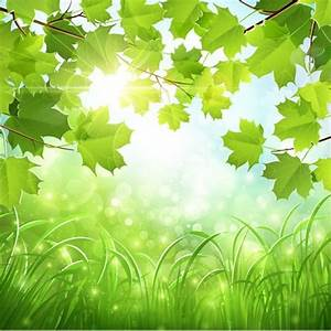 Green nature backgrounds wallpapers frecreatives