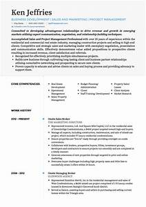 Cv Templates For It Professionals Project Manager Cv Examples Templates Visualcv